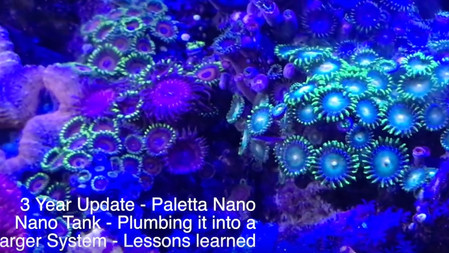 Plumbing a nano into your main reef system - lessons learned - Nano Reef Tank Plumbing