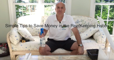 Tips and tricks to save money keeping a saltwater aquarium - starting a saltwater aquarium video