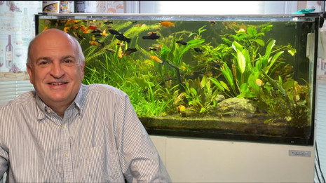 What Mike Paletta learned about coral reef keeping and saltwater fish during COVID-19