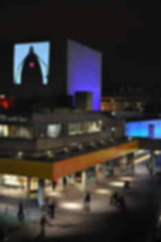 Matthew Robins live at the National Theatre in 2010 - here projecting a shadow puppet from Flyboy and the Robot