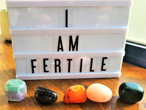 I Am Fertile~Intention Setting Gemstone Kit