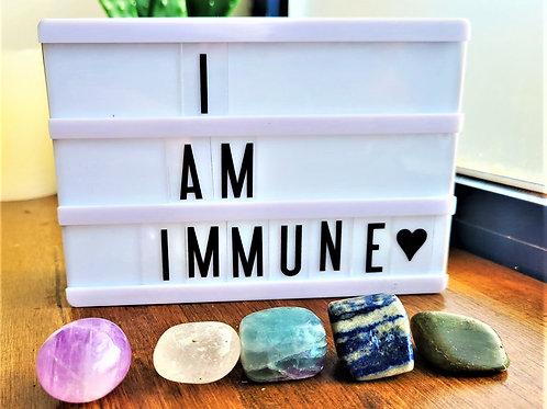 I Am Immune~Intention Setting Gemstone Kit