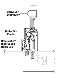 Typical Feeding & Ginning for ELS Cotton