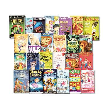 KS2 books.jpg