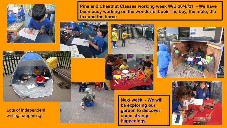 Copy of Reception  weekly update for par