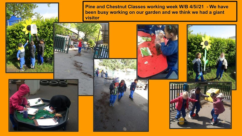 4_5_21  Reception  weekly update for par