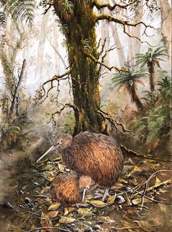 Kiwi and Chick