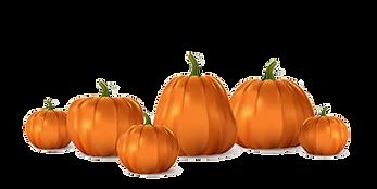 157631505-halloween-orange-pumpkin-set-isolated-traditional-realistic-food-october-holiday