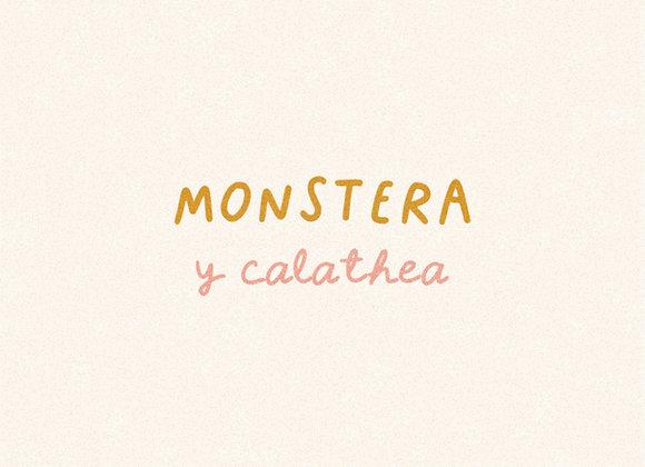 Tipografías: Monstera y Calathea