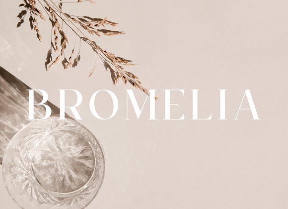 Tipografía Bromelia