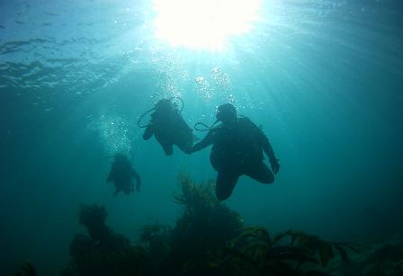 Plongée ou randonnée palmée