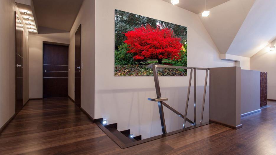 Red tree Mock up 01.jpg