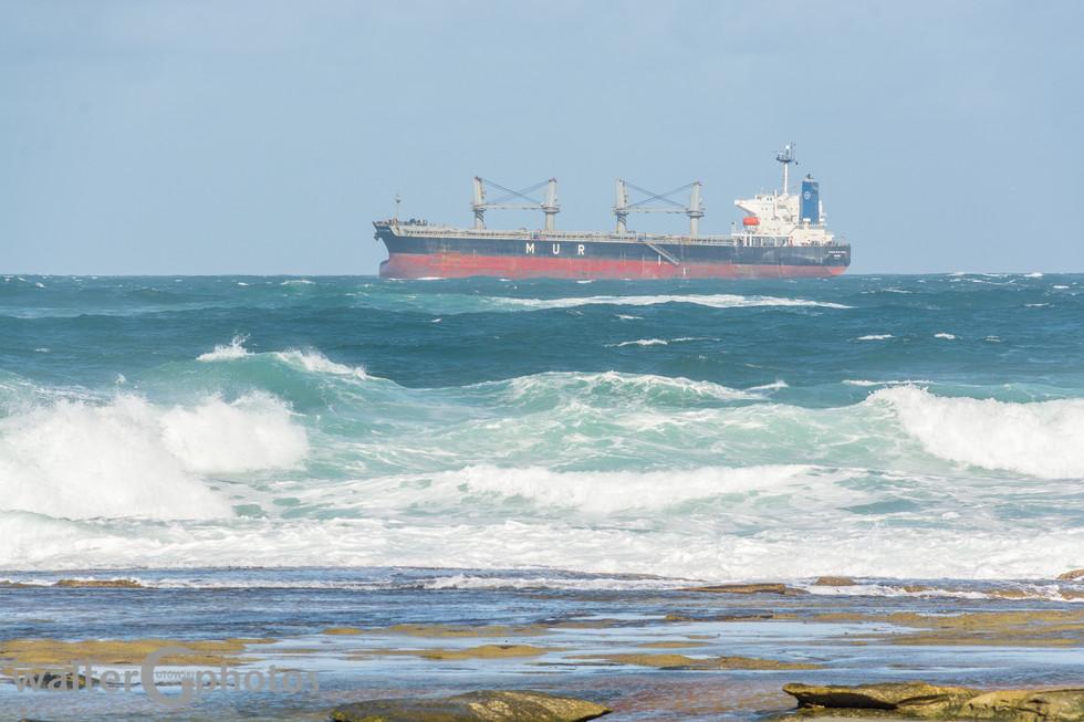 Ship bypassing Shelly Beach, Australia