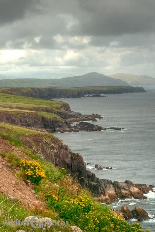 Irish Seascape, Slea Head Drive, Ireland