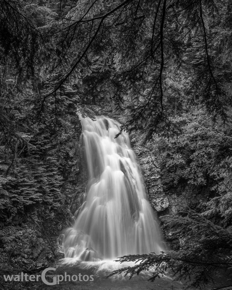 Moore Creek Falls