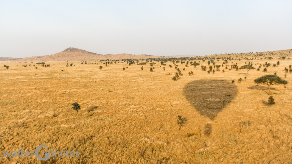 Landing site