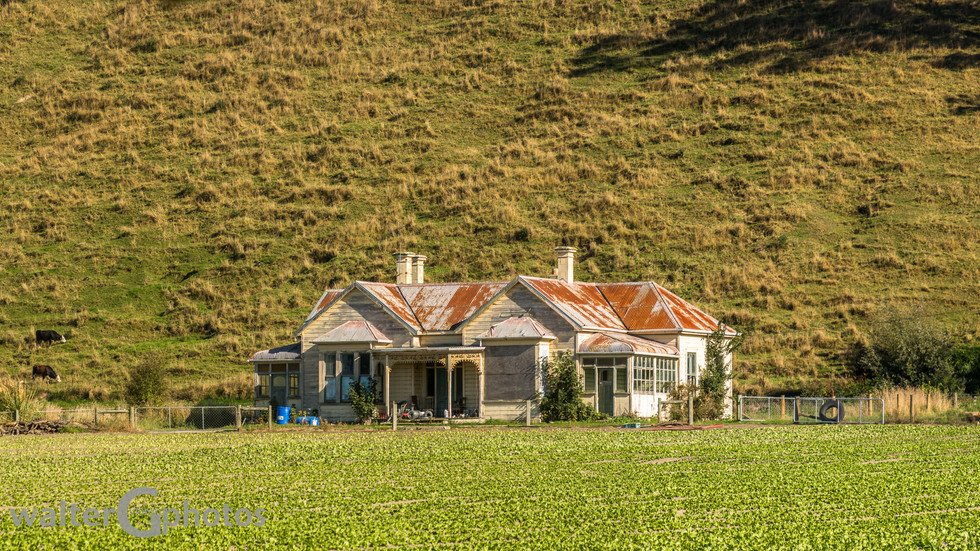 Fixer-upper, south of Timaru hwy #1, SI, New Zealand