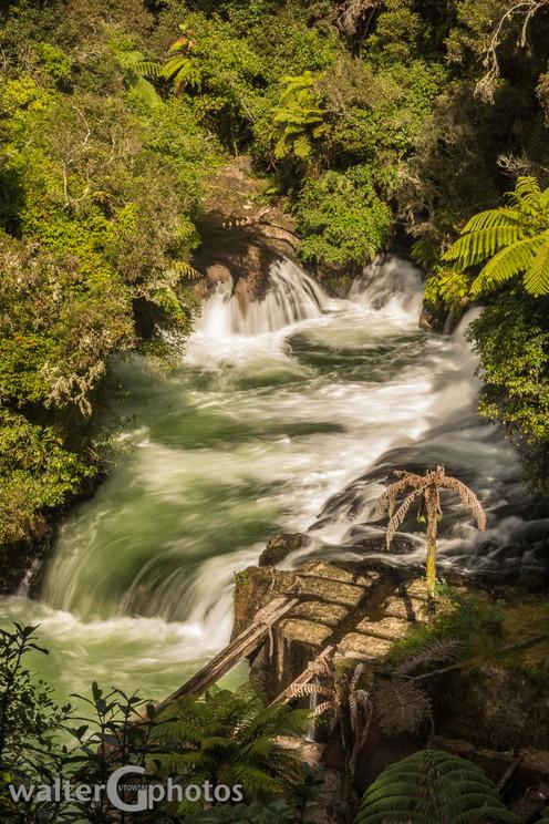 Okere Falls, NI, New Zealand