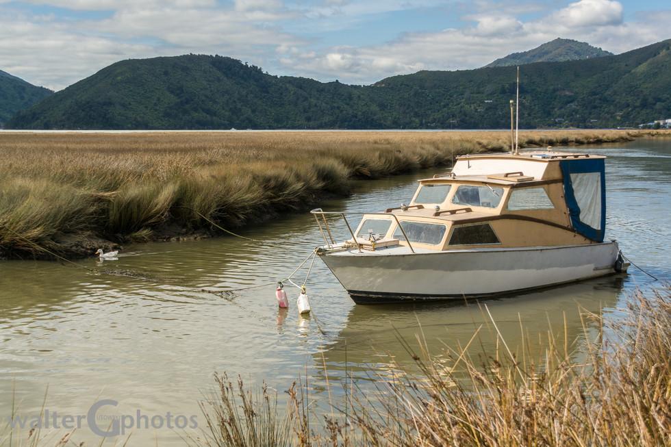 Moored boat, near Nelson, SI, New Zealand