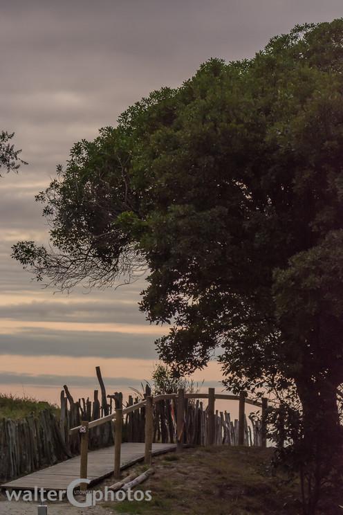 Twilight at Nelson, New Zealand