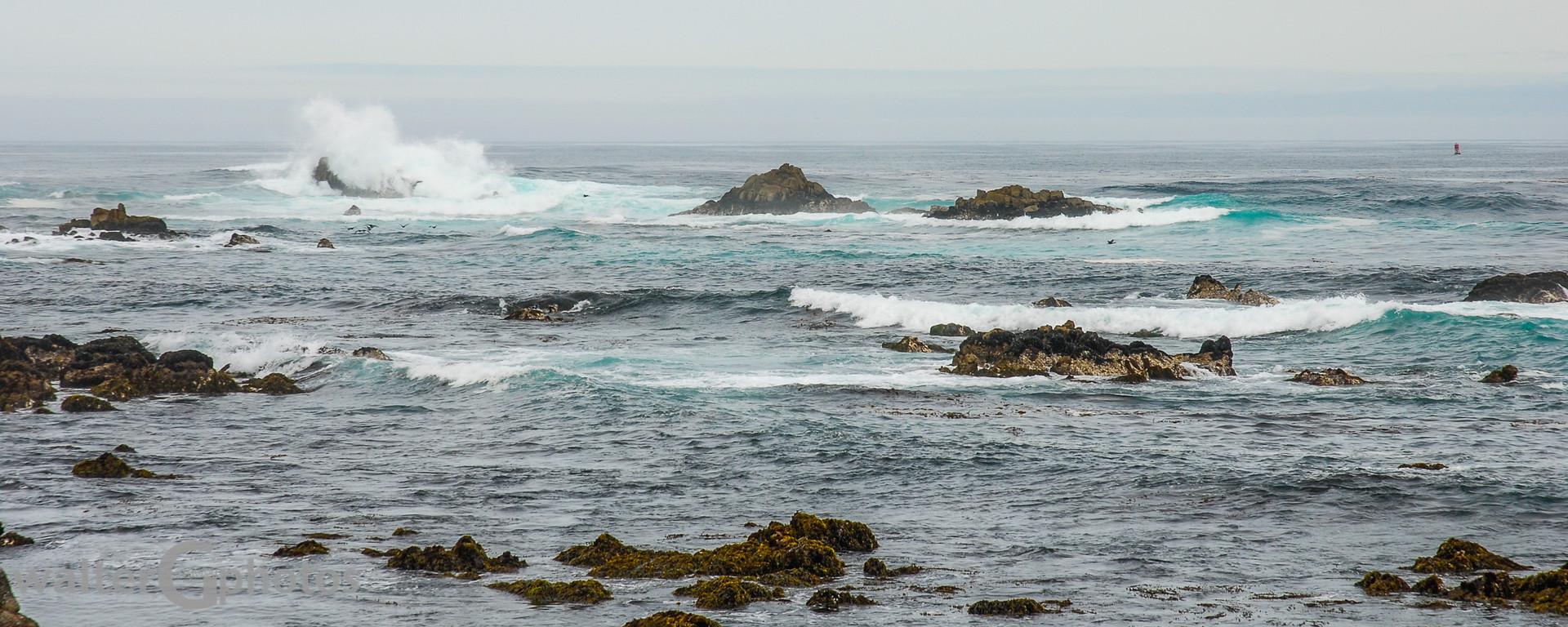 California Seascape
