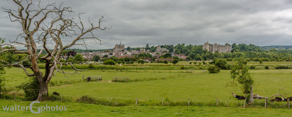 Landscape with Arundel Castle and Arundel Cathedral of Our Lady and Saint Philip Howard, Arundel, England