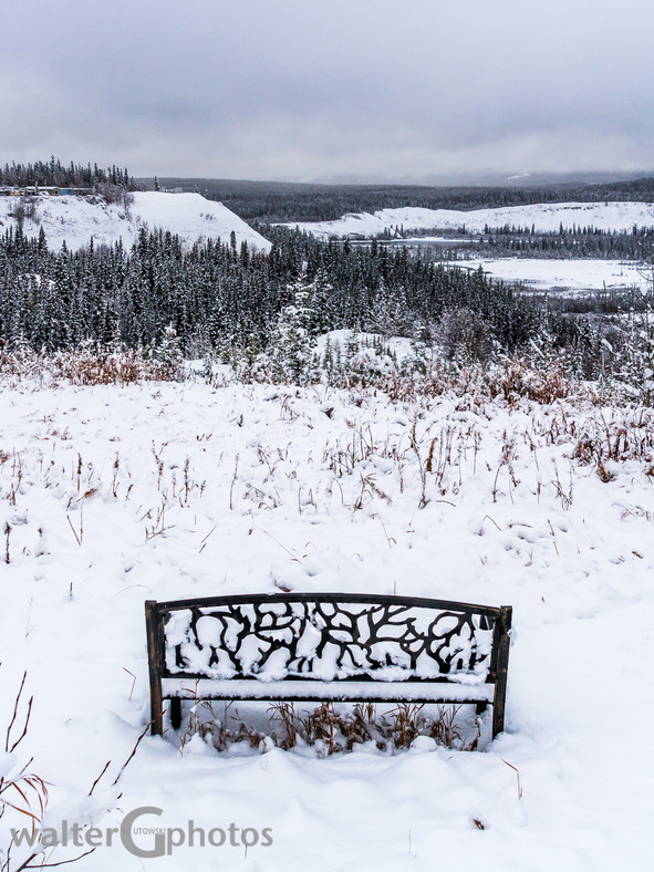 Yukon River Valley