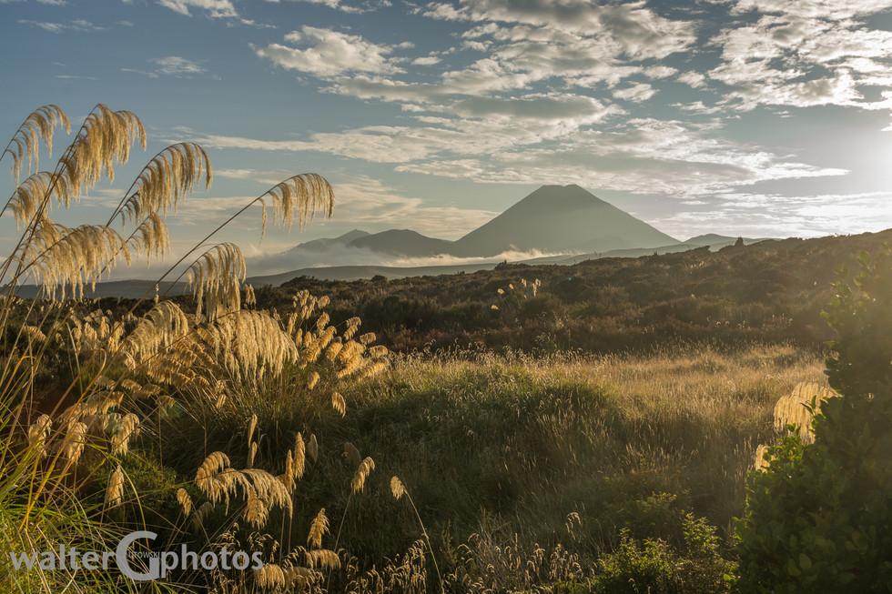 Mount Ngauruhoe from Chateau Tongariro Hotel