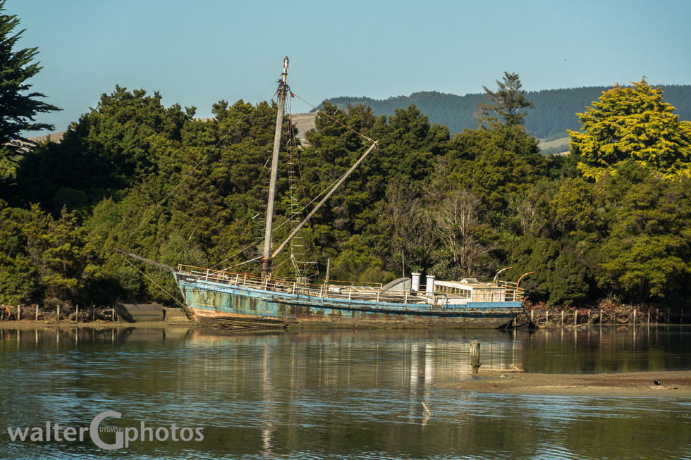Retired on Surat Bay, SI, New Zealand