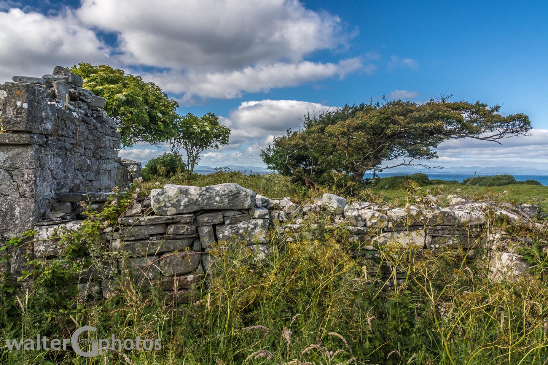 Scene near Sligo, Ireland