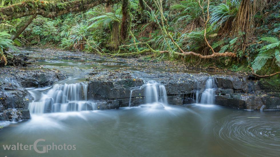 'Little' Purakaunui Falls, SI, New Zealand