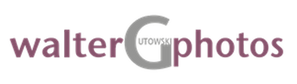 WGP-plum_gray.png