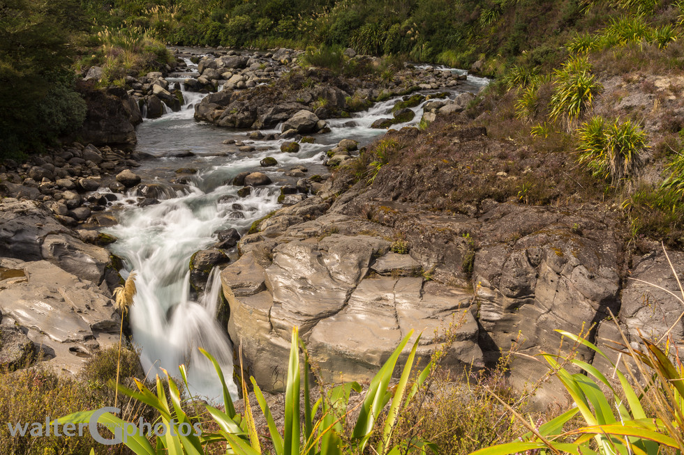 Mahuia Rapids, NI, New Zealand