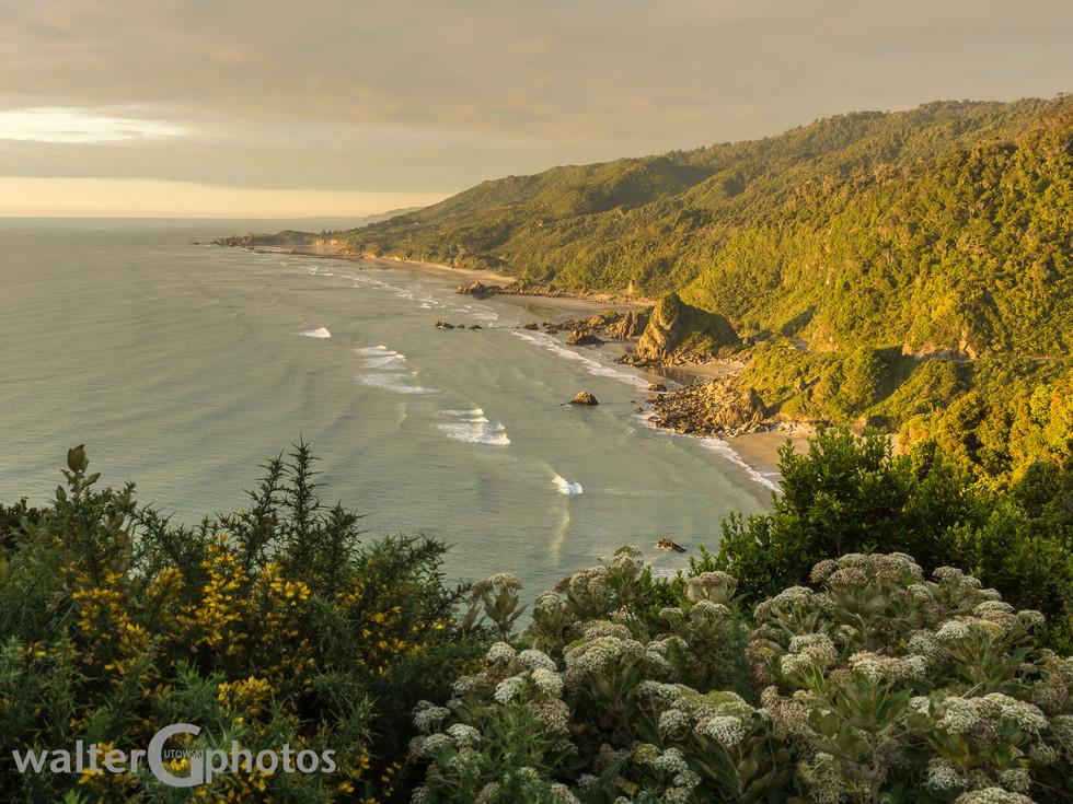 Golden hour coastline near Punakaiki, New Zealand