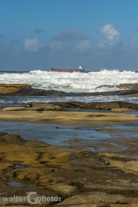 off Shelly Beach, Sunshine Coast