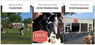 Fetch Website Banner - I Do Social.png