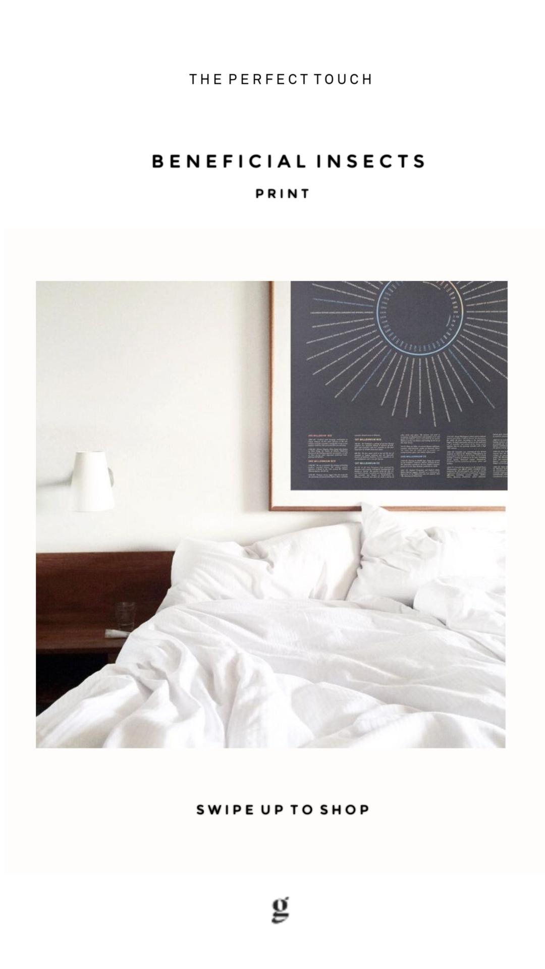 Instagram Design Rachel Justis