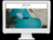 ecommerce store website designer.png