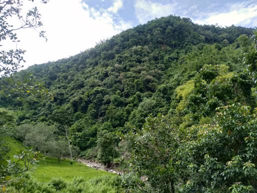 Mengintip Potensi Wisata Gunung Panas dan Peluang Menjadi Ekowisata