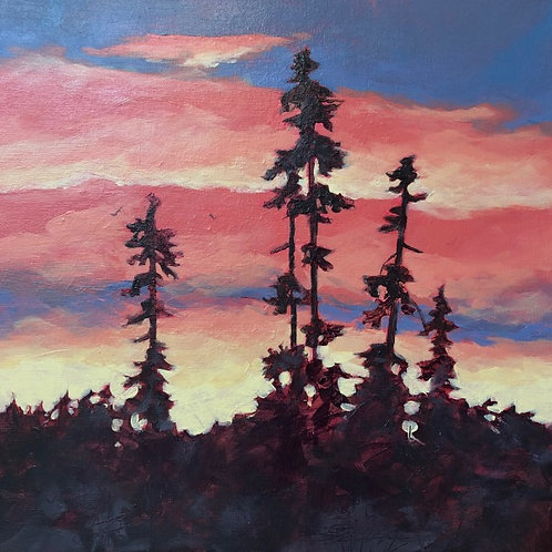 Sunset and Silhouettes- video class/ base price shipping not included