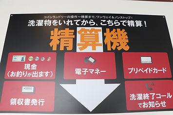 IMG_6579.JPG