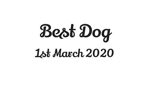 'Best Dog' and Date Bandana - Add On