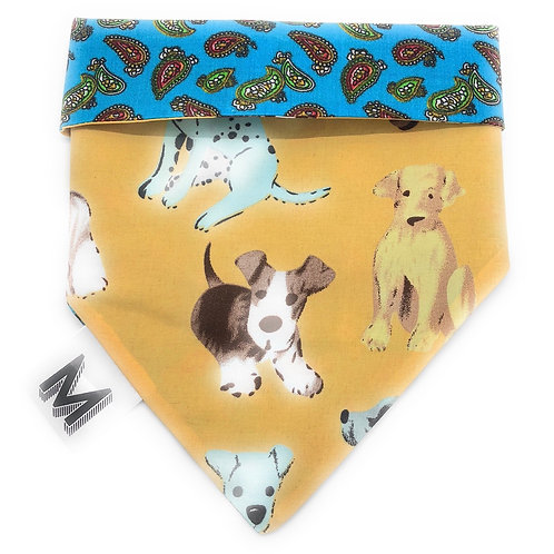 Paisley Pooches (Slip on ONLY)