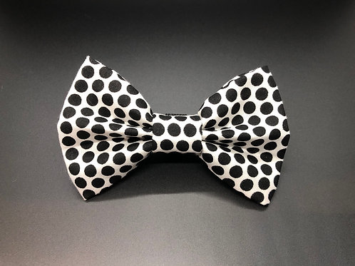 Spotted Black Bow