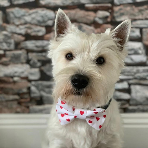 Lovers Bow Tie
