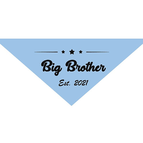 Big Brother Est. 2021