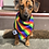 Thumbnail: Pride '21