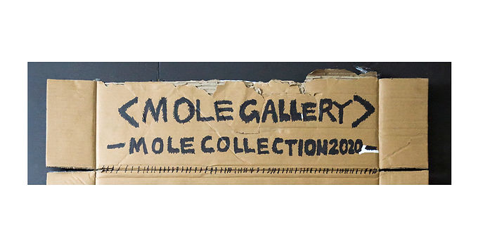 MOLE COLLECTION 2020