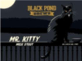 small mr kitty.jpeg