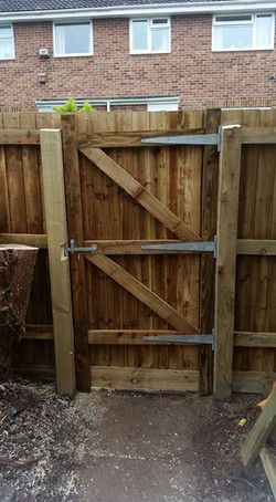 removed conifer trees put 6ft closeboard fence up with hand built gate